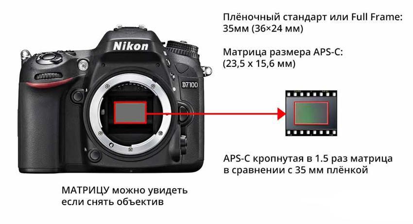 размер матрицы цифрового фотоаппарата доказывает, что