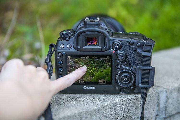 меньше поводов как сфотографировать предмет вблизи на камеру подходят для скоростного